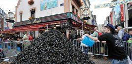 La braderie de Lille 2016 annulée…2017 encore plus belle
