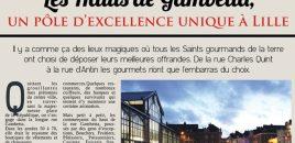Les Hauts de Gambetta un pôle d'excellence unique à Lille